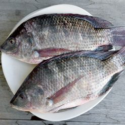 Buy Tilapia Fish Everyday Meat